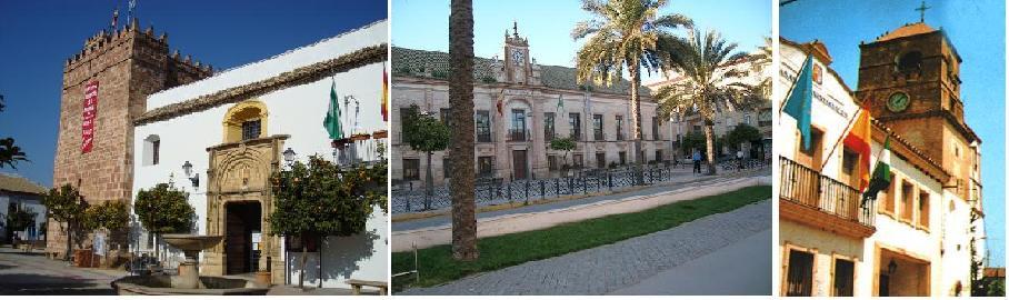 Sistema de pinchos Palomas Córdoba